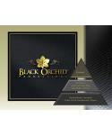 Uleiuri esentiale pentru30 - 5000mp - Pachet promotional UltraScent 200P + Black Orchid 500ml + Orange Delight 500ml - arli.ro