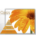 Uleiuri esentiale pentru30 - 5000mp - Pachet promotional UltraScent 200P + Oasis 500ml + Femme 500ml - arli.ro