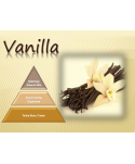 Uleiuri esentiale pentru30 - 5000mp - Odorizant de camera ulei esential 500 ml ScentPlus - Vanilla - arli.ro