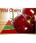 Uleiuri esentiale pentru30 - 5000mp - Odorizant de camera ulei esential 500 ml ScentPlus - Wild Cherry - arli.ro