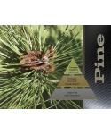 Uleiuri esentiale pentru30 - 5000mp - Odorizant de camera ulei esential 50 ml ScentPlus - Pine - arli.ro